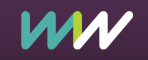 Women into the network Logo