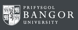 bangor-bus-school-logo