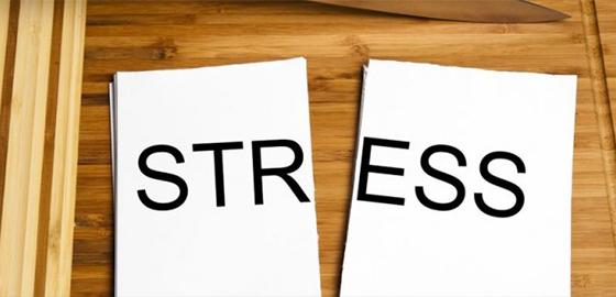 stress-shirleypalmer