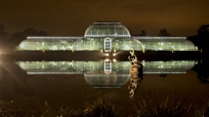 Christmas at Kew Gardens @ Kew Gardens | Richmond | United Kingdom