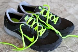 Nike-Wildhorse-GTX