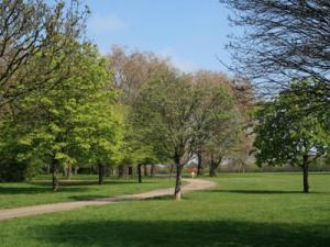 Ladies in London Summer Walks @ Hyde Park | London | United Kingdom