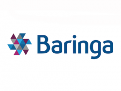 Baringa Partners LLP - technology opportunities