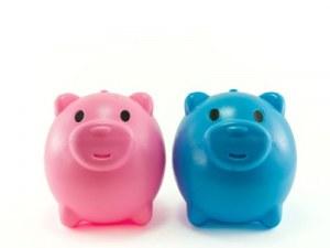 Piggy Bank feature - Gender Pay Gap