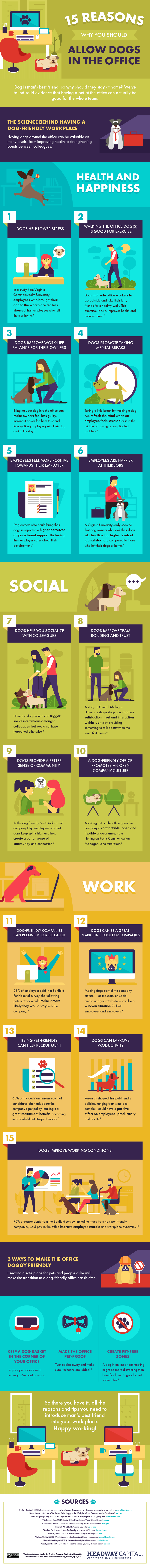 DESIGN -15 Reasons Why You Should Allow Dogs in the Office
